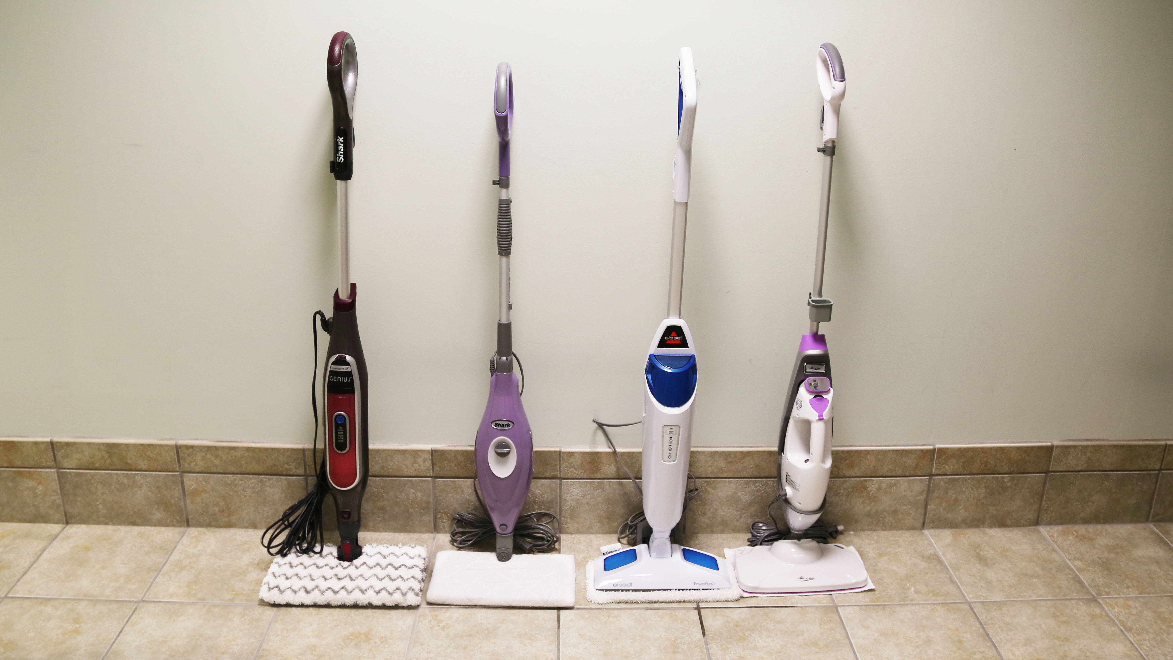 The Best Steam Mop January 2021