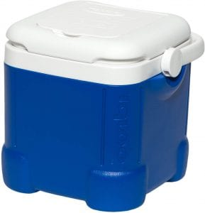 Igloo Cooler, 12 Quart
