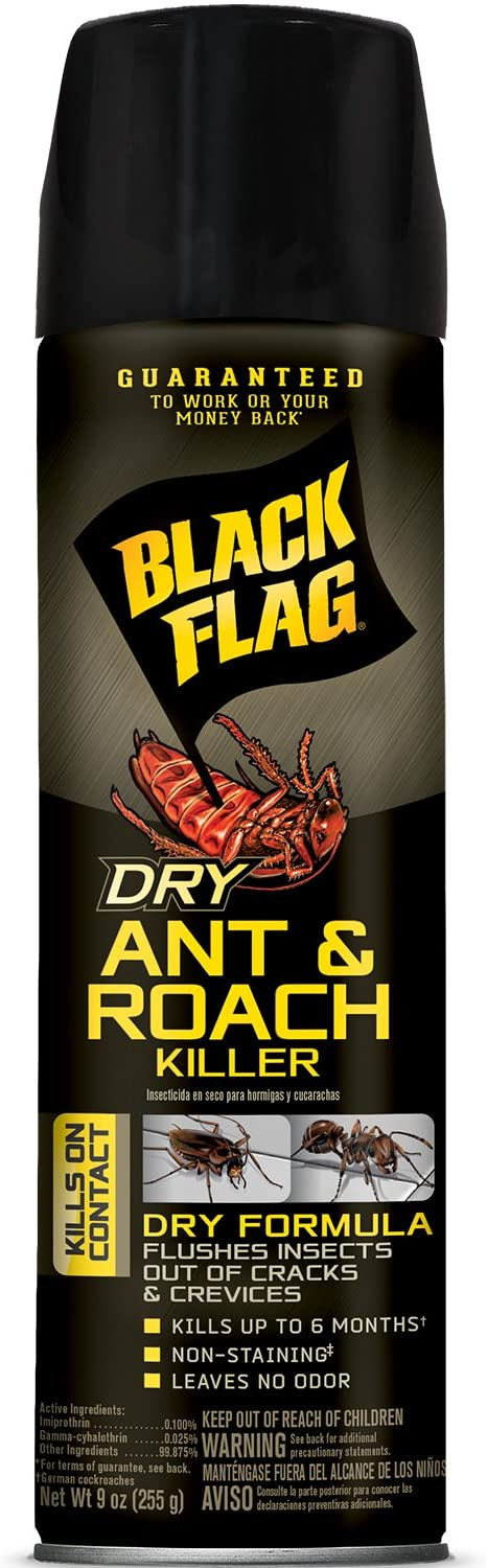 Black Flag Dry Ant & Roach Aerosol Spray