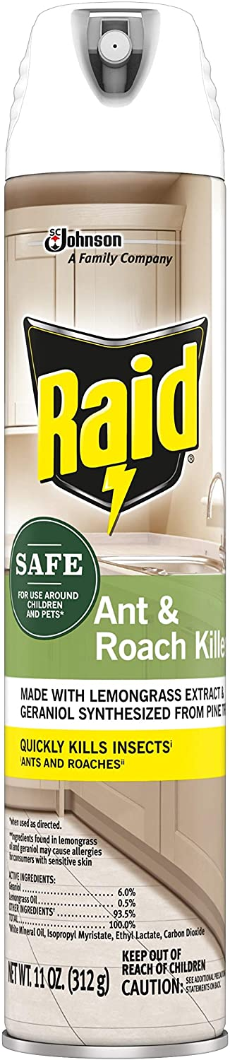 Raid Ant & Roach Killer Spray