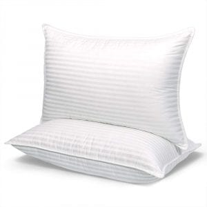 COZSINOOR Dream Series Hotel Pillows, 2-Pack